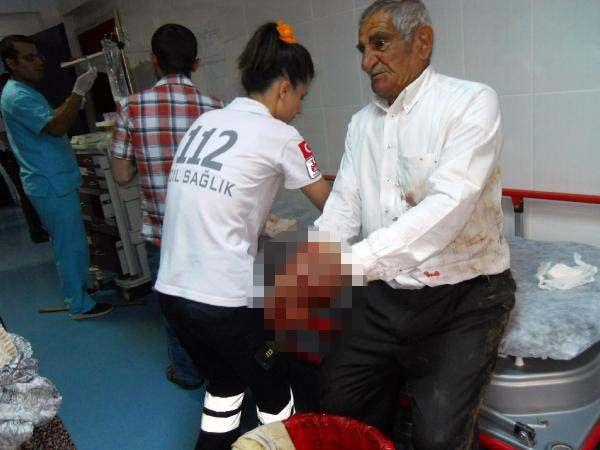 Derik'te köpek 6 kişiyi hastanelik etti