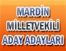 Seçim 2011 Mardin Milletvekilleri Aday Adayları Listesi