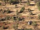 Düşen Helikopterden ilk görüntüler