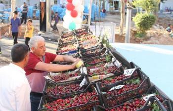 Kiraz'a Özel Yeşilli'de Festival