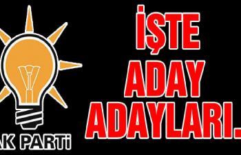 İşte AK Parti Aday Adayları!