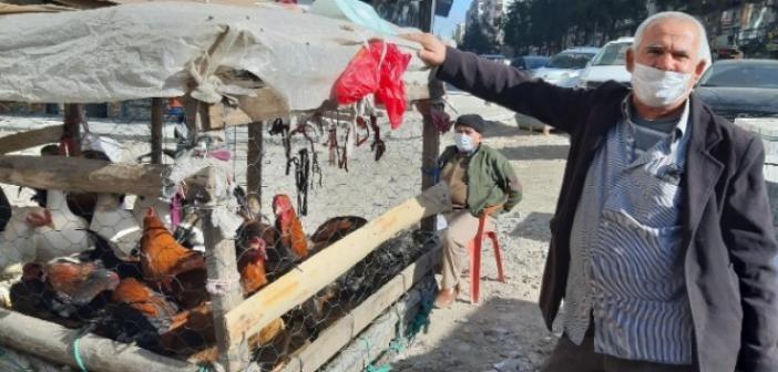 Pandemi yılbaşı öncesi hindi satışlarını olumsuz etkiledi
