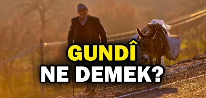 Gundi ne demek? Kürtçe 'gundî' ne anlama gelmektedir?