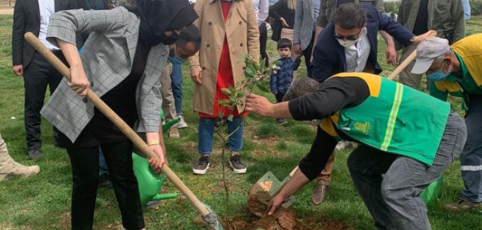 Setri Aşk Mardin Öncülüğünde Fidan Dikim Etkinliği Gerçekleştirildi