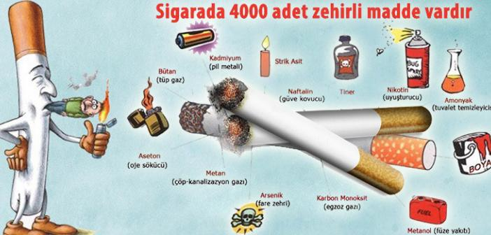 Sigaradan dolayı bir yılda kaç insan ölüyor? Sigaranın zararları nelerdir?