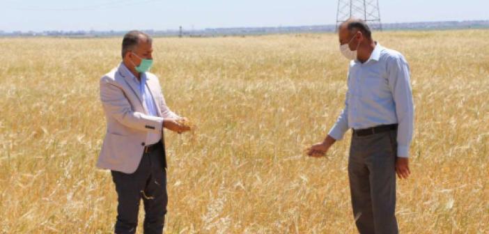 """Kuraklıkla boğuşan çiftçilerden """"afet bölgesi"""" talebi"""
