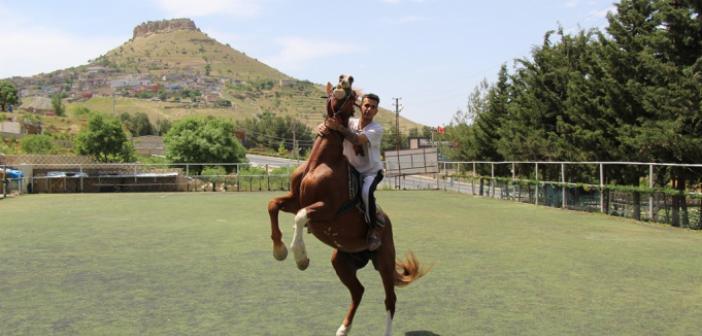 Mardin'de atlı binicilik sporuna yoğun ilgi