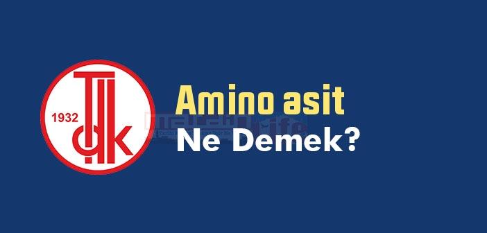 Amino asit ne demek? TDK'ya göre Amino asit sözlük anlamı nedir?