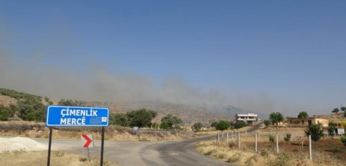Mardin'de orman yangını