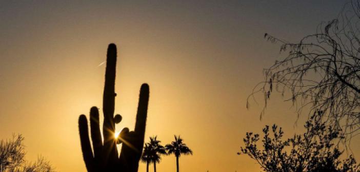 ABD'de sıcaklar nedeniyle yaklaşık 200 kişi bir haftada öldü