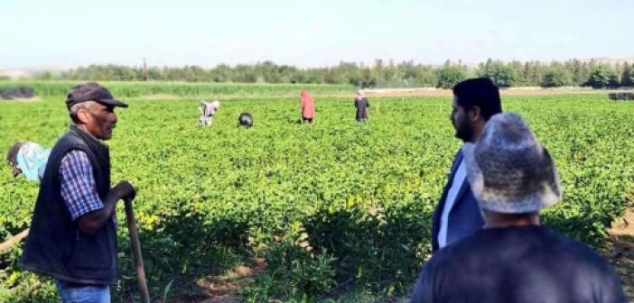Kuraklık nedeniyle çiftçiye destek verilmeli