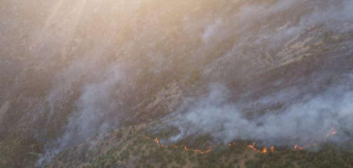 Bitlis'te çıkan orman yangınına müdahale ediliyor