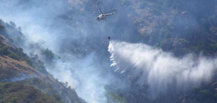 Bitlis'te çıkan yangın tamamen kontrol altına alındı