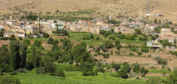 Mardin'de 9 mahallede karantina uygulamasına karar verildi