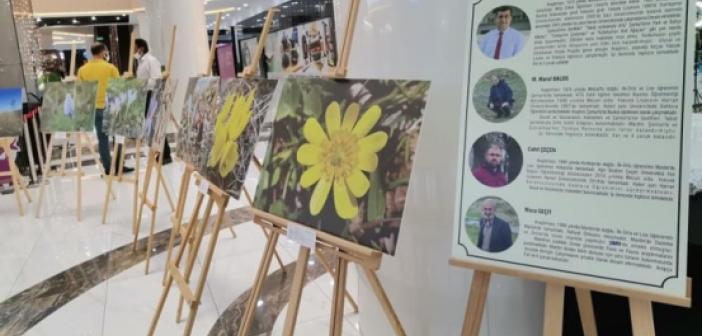 Mardin'de endemik fotoğraf sergisi