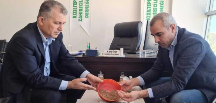 """Öter: """"Kızıltepe Mercimeği Coğrafi İşaret Almayı Hak Ediyor"""""""