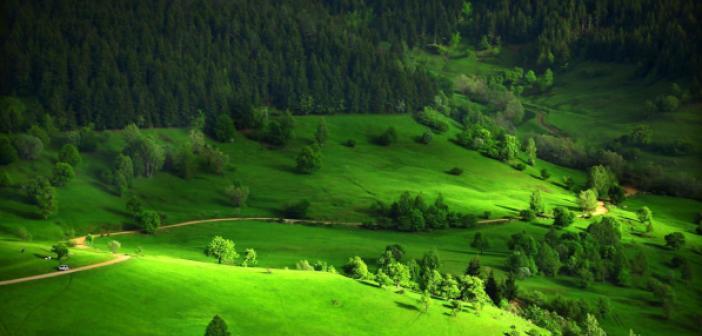 Rüyada Yeşil Alan Görmek ne anlama gelir? Rüyada Yeşil Alan Görmek ne demek?